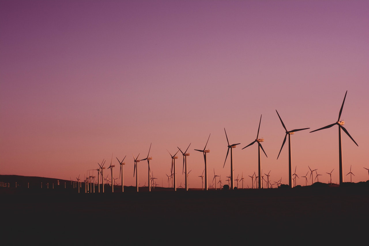sustainability windmills pink purple